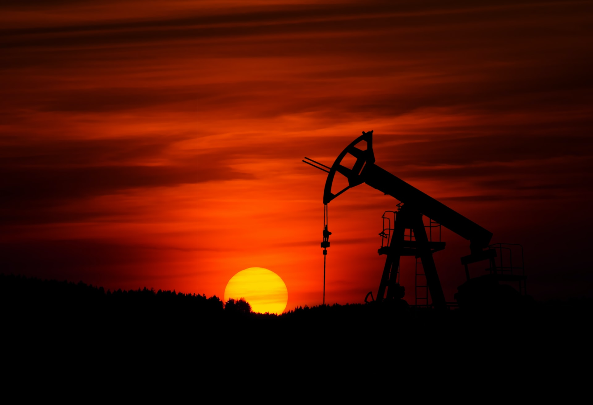 🛢 Hedge funds believe in the future of oil?